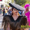 pink_loerie_mardi_gras_2018_parade_056