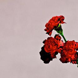 mambaonline_music_reviews_john_legend_love_future