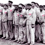 Europe remembers gay victims of holocaust