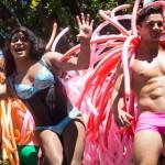 Cape Town Pride 2015 Parade Gallery