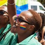 Soweto Pride 2015 returns to Meadowlands