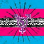 Africa's first Transgender Visibility day this December