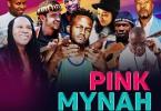 pink_mynah_2016