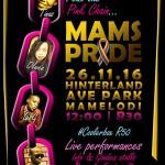 Mamelodi to mark LGBTI Pride ahead of World Aids Day