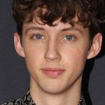 SA-born Troye Sivan cast in star-studded gay conversion therapy film