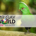 Knysna Mr Gay World 2018 / Pink Loerie Travel Packages