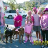 pink_loerie_mardi_gras_2018_parade_001