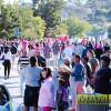 pink_loerie_mardi_gras_2018_parade_046